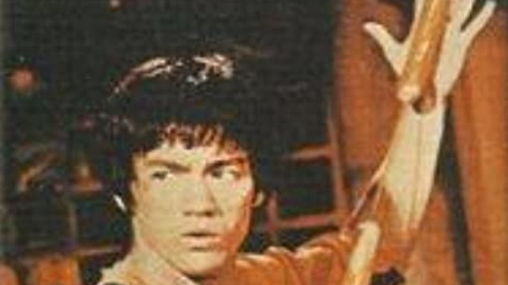 Bruce Lee: Story of the Dragon