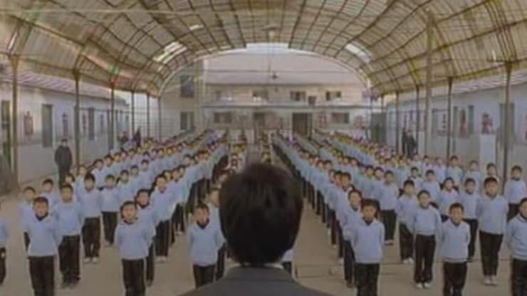 Wushu: The Young Generation