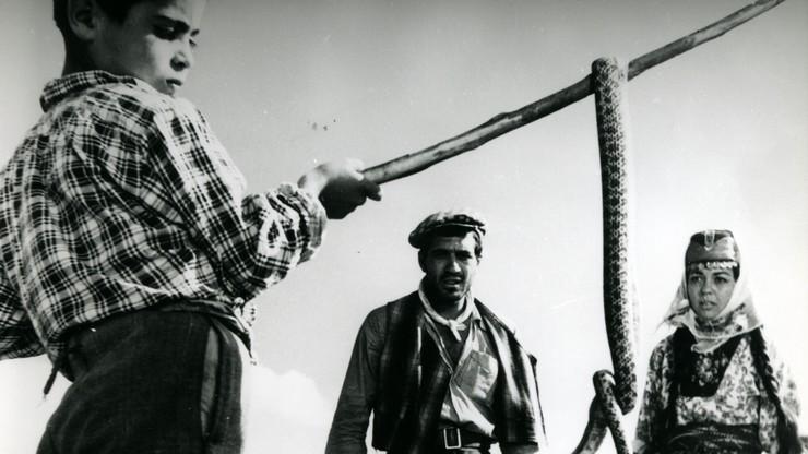 Revenge of the Snakes
