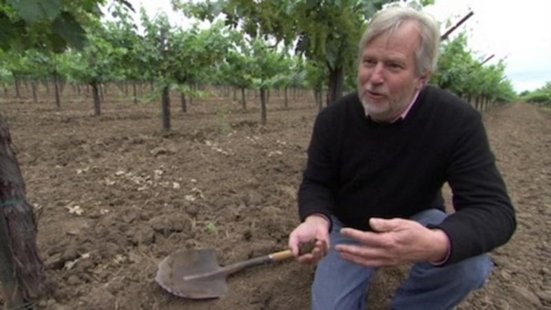 Portrait of a Winemaker: John Williams of Frog's Leap